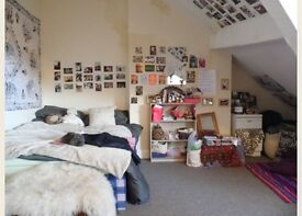 Room to rent in 7 bedroom student house