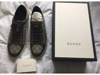 Brand new Gucci trainers 7-41 size
