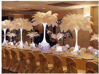 Wedding & Venue Decoration Event Planner