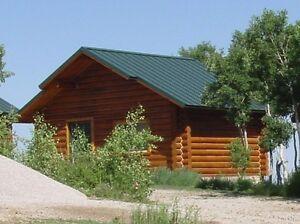 Log Cabin Home Shell Kit Logs 16ft X 20ft Ebay