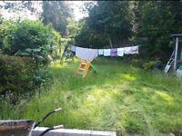Landscaping/pressure washing