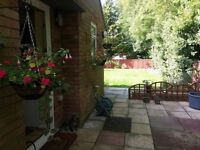 1 bed semi detached council bungalow