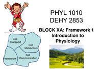 Dalhousie physiology PHYL 1010 /PHYL 1000/ DHEY 2853 X / Y tutor