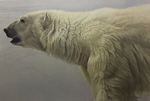 Robert Bateman - Polar Bear Profile