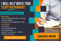 Need Help with an essay, assignment homework?