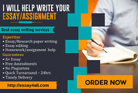 Affordable essay, assignment, homework help service