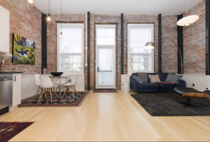 Luxury Furnished Downtown Vacation Rental $150/N 3 Night Min