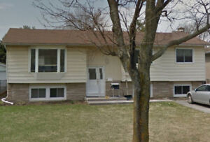 Large, beautiful 4 bedroom family home - Avail Jan 1