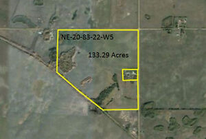 133 Acres One Mile South of Peace River Airport