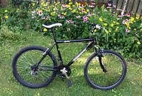 Vélo de montagne bon etat
