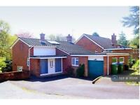 5 bedroom house in Woodview Close, Southampton, SO16 (5 bed)