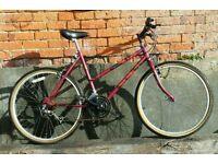 Ladies Raleigh Camaro bike