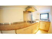 Massive 5 bed house with 2 kitchen and bathrooms plus studio with bath and kitchen on Lower Gr Floor