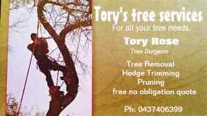 Torys tree services Mount Nelson Hobart City Preview