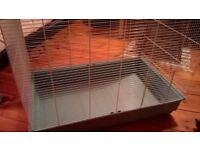 Jenny rat cage and accessories