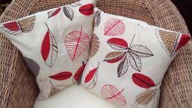 2 x cushion covers