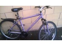 two women's bikes for sale