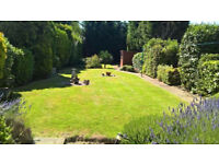 Gardener 16 years experience.Paving,Fences,Driveway,Turfing,Deck,Tilling,Brick Work,Artificial Grass