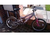 Girl's Mountain Bike for Sale. Age 6-9. £50