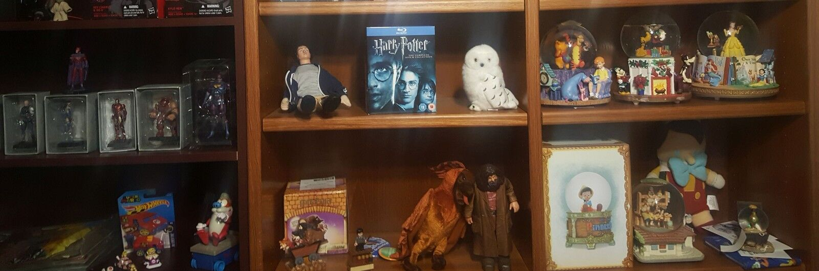 The Wizarding World of MegamanDS