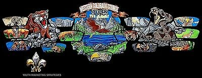 WESTERN COLORADO COUNCIL CO OA MIC-OSAY 541 FLAP 2017 JAMBOREE 18-PATCH 100 MADE