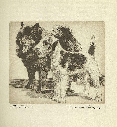 Chow / Fox Terrier - Vintage Dog Print - 1936 Diana Thorne
