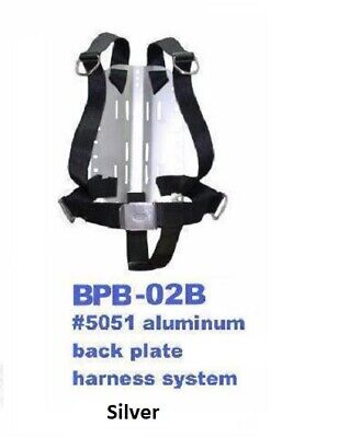 Type Backplate - Silver aluminium backplate and basic DIR type harness with crotch strap