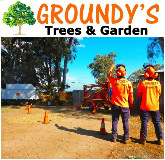 Groundy 39 s tree services landscaping gardening for Gardening tools brisbane