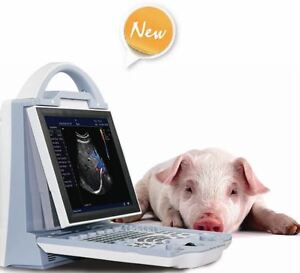 Veterinary Ultrasound doppler color DCU12 with 1 transducer to Choice.