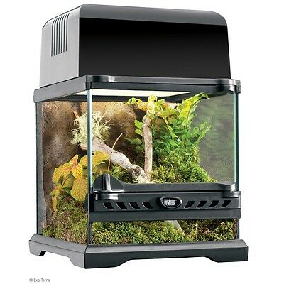 Exo Terra Nano Glass Terrarium Reptile Habitat  8 x 8 x 8 Inch