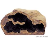 Reptile magnetic rock for sale