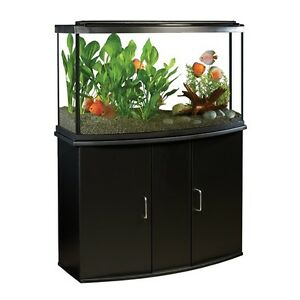 45 Gallon Bow front Aquarium and stand