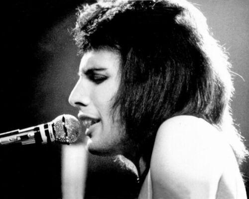 Rock Band QUEEN Freddie Mercury Glossy 8x10 Photo Rock & Roll Print Poster