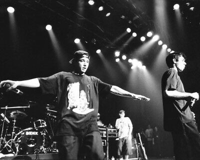 Hip-Hop Band BEASTIE BOYS Glossy 8x10 Photo Musical Group Print Mike D Poster