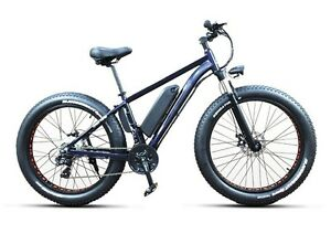 Trillium - Wasaga - Fat Tire Electric Bicycle - for sale