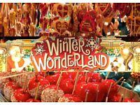 Winter Wonderland Staff