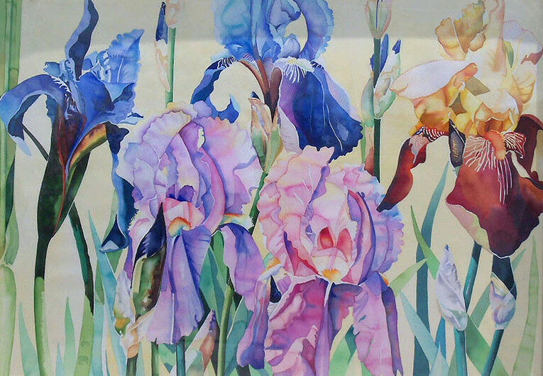 Carolyn Hoyle Original Watercolor Painting On Paper Purple Irises, Flowers, Obo