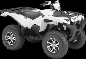2019 yamaha  Grizzly EPS  PEARL WHITE