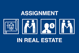 CONDO Presales Expert ASSIGNMENT Help you sell top price