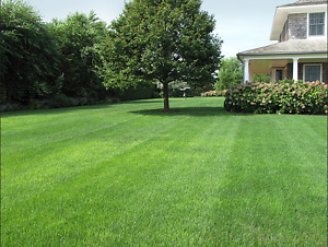 SOD AND INSTALL FOR ONLY .69 CENT PER SQ FT