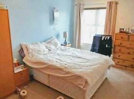 Beautiful double room in Canning Town area