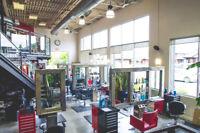 Ra Hair Studio seeks APPRENTICE