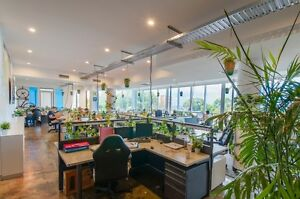 Hot Desk and Permanent Desks available in great Co-Working space Neutral Bay North Sydney Area Preview