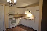 NEWLY RENOVATED SPACIOUS 2BR APT IN VAL CARON
