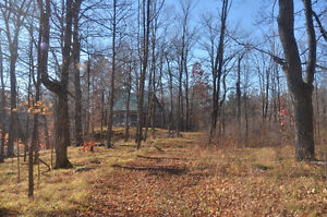 17 ACRE BUILDING LOT WITH LOG CABIN, DRILLED WELL AND 2 PONDS