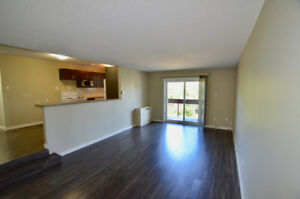 Condo for Lease (2 Bedr/utilities incl) - River View