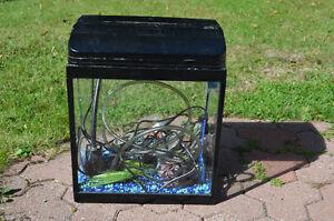 Aquarium 34.5 litres (7.5 gal)