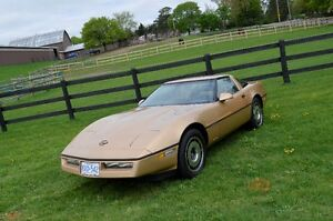 1984 Gold Corvette