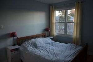 2 rooms for rent in Carlington townhouse