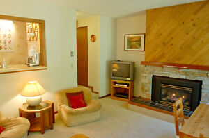 Mt. Baker Lodging - Condo #91 - CLOSE TO HIKING, SLEEPS-2!